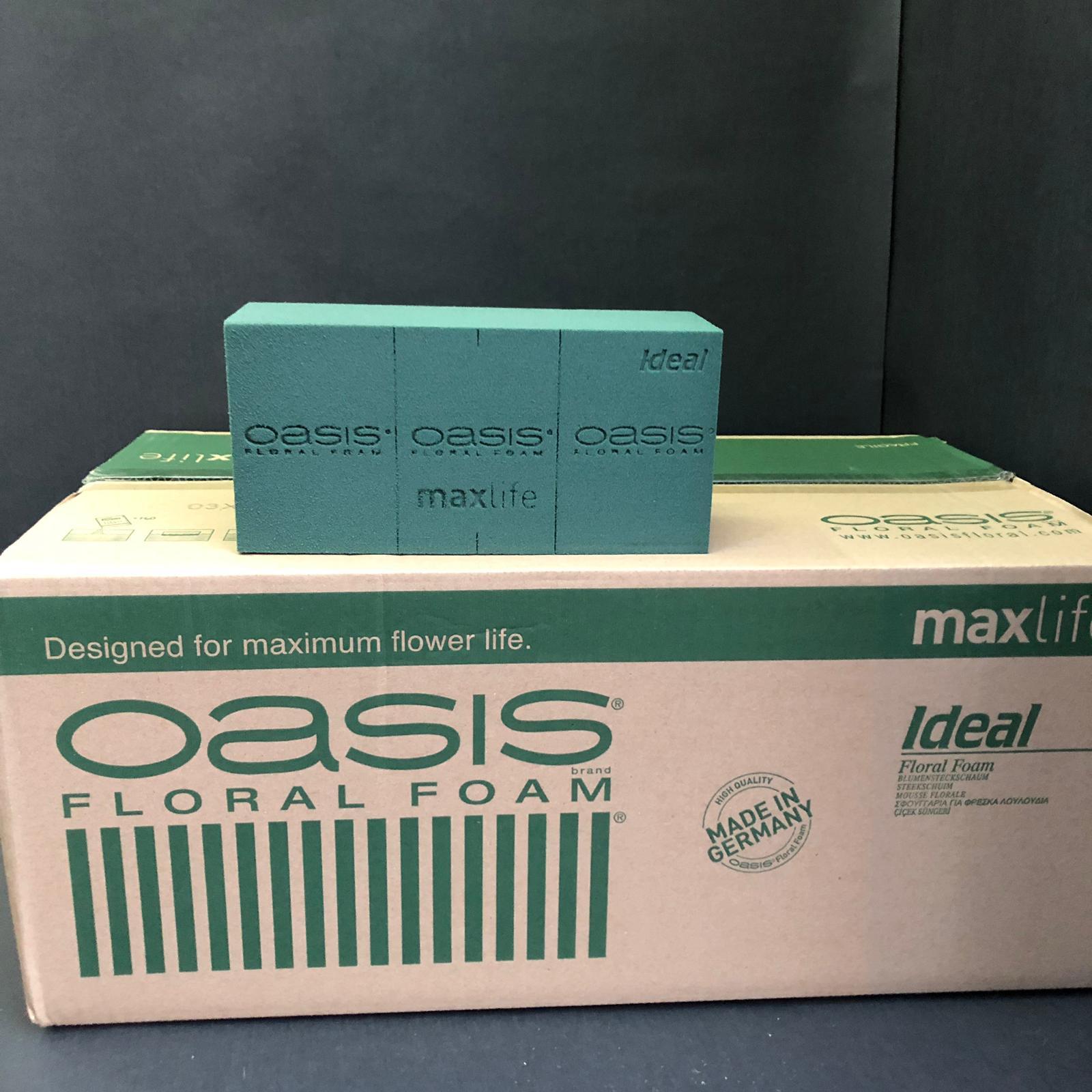 Oasis Çiçek Süngeri İdeal
